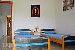 Villa Stella Apartments_holidays_in_Villa_Macedonia_Halkidiki_Chalkidiki Area