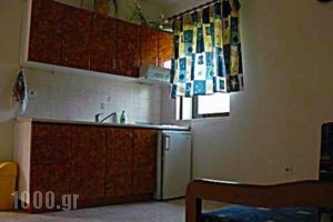 Villa Stella Apartments_lowest prices_in_Villa_Macedonia_Halkidiki_Chalkidiki Area