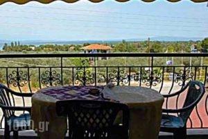 Villa Stella Apartments_best deals_Villa_Macedonia_Halkidiki_Chalkidiki Area