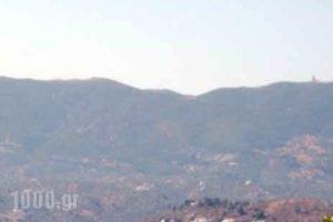 Villa Dolphins_holidays_in_Villa_Piraeus Islands - Trizonia_Poros_Poros Chora