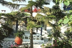 Tina'S Apartments_best prices_in_Apartment_Cyclades Islands_Milos_Adamas