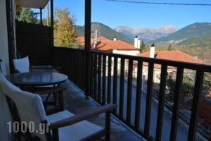 Rizoma_best prices_in_Hotel_Central Greece_Evritania_Neo Mikro Chorio