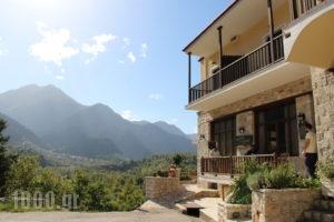 Rizoma_holidays_in_Hotel_Central Greece_Evritania_Neo Mikro Chorio