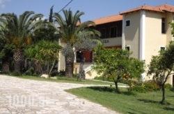 Magda Apartments in Archea (Palea) Epidavros , Argolida, Peloponesse