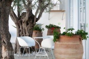 Orloff Resort_best deals_Hotel_Piraeus Islands - Trizonia_Spetses_Spetses Chora