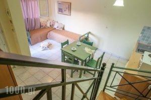 San Giorgio Maisonettes_holidays_in_Apartment_Ionian Islands_Zakinthos_Zakinthos Rest Areas
