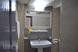 Erato Apartments_best deals_Apartment_Dodekanessos Islands_Rhodes_Lindos