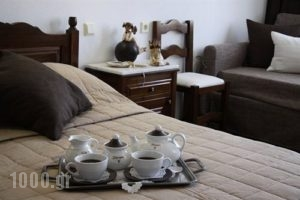 Petrino_lowest prices_in_Hotel_Thessaly_Magnesia_Portaria