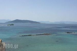 Areti_best deals_Hotel_Piraeus Islands - Trizonia_Aigina_Agia Marina