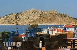 Hippocampus in Perdika, Aigina, Piraeus Islands - Trizonia