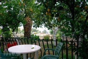 Villa Bianca_travel_packages_in_Ionian Islands_Kefalonia_Skala