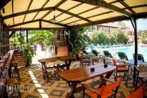 Cactus_lowest prices_in_Apartment_Ionian Islands_Zakinthos_Laganas