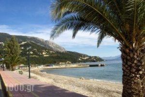 Gorgona_best prices_in_Apartment_Ionian Islands_Corfu_Corfu Rest Areas