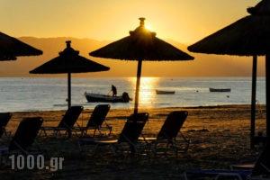 Island Beach Resort_accommodation_in_Hotel_Ionian Islands_Corfu_Kavos