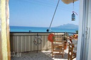 Anastasia_lowest prices_in_Apartment_Ionian Islands_Zakinthos_Zakinthos Chora