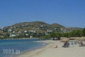 Siren Hotel_accommodation_in_Apartment_Cyclades Islands_Paros_Piso Livadi