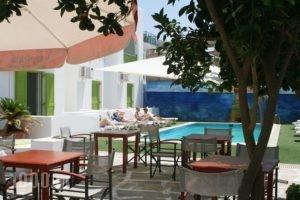 Siren Hotel_best deals_Apartment_Cyclades Islands_Paros_Piso Livadi