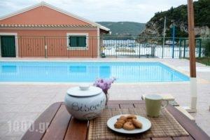 Akis_accommodation_in_Apartment_Ionian Islands_Corfu_Palaeokastritsa