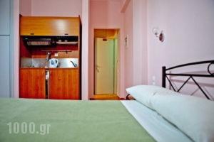 Venetia Studios_holidays_in_Hotel_Piraeus Islands - Trizonia_Aigina_Perdika