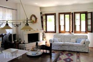 El Villa Rooms_holidays_in_Villa_Central Greece_Evia_Istiea