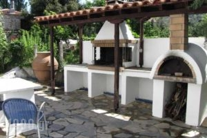 El Villa Rooms_best prices_in_Villa_Central Greece_Evia_Istiea