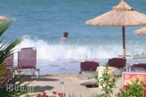 Korali House_travel_packages_in_Epirus_Preveza_Preveza City