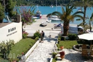 Babis Apartments_accommodation_in_Apartment_Ionian Islands_Lefkada_Lefkada's t Areas
