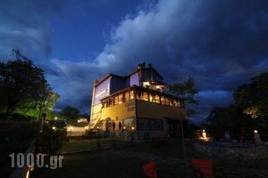 Amadrias Maison_best deals_Hotel_Macedonia_Pieria_Katerini