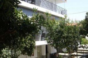 Vicky Studios_accommodation_in_Hotel_Aegean Islands_Limnos_Myrina