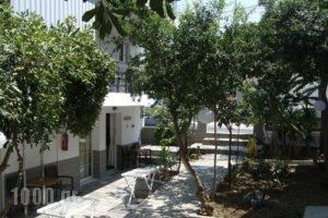 Vicky Studios_holidays_in_Hotel_Aegean Islands_Limnos_Myrina