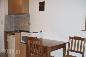 Vicky Studios_best prices_in_Hotel_Aegean Islands_Limnos_Myrina