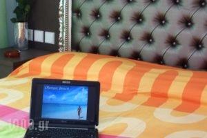 Hotel White Rose Beach_lowest prices_in_Hotel_Macedonia_Pieria_Olympiaki Akti