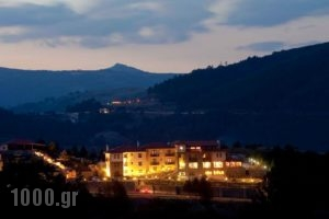 Pindos Palace_best prices_in_Hotel_Macedonia_Grevena_Lavdas