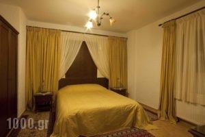 Pindos Palace_holidays_in_Hotel_Macedonia_Grevena_Lavdas