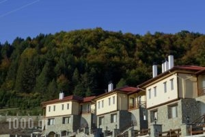 Pindos Palace_best deals_Hotel_Macedonia_Grevena_Lavdas
