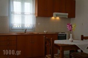 Klados Studios_lowest prices_in_Apartment_Cyclades Islands_Sifnos_Sifnosora