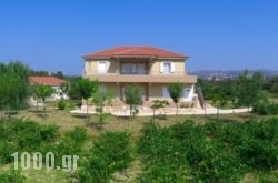 Aggelina's Apartments in Kefalonia Rest Areas, Kefalonia, Ionian Islands