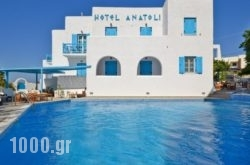 Anatoli Hotel in Naxos Chora, Naxos, Cyclades Islands