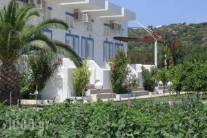 Nefeli Apartments_holidays_in_Apartment_Dodekanessos Islands_Kos_Kefalos
