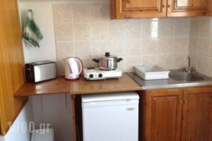 Nefeli Apartments_best deals_Apartment_Dodekanessos Islands_Kos_Kefalos