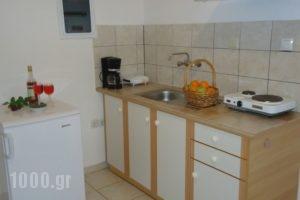Valentino Villas & Apartments_best prices_in_Villa_Ionian Islands_Zakinthos_Zakinthos Rest Areas