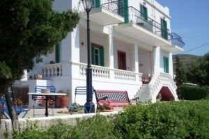 Blue Dolphin_accommodation_in_Hotel_Cyclades Islands_Andros_Batsi