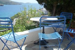 Blue Dolphin_travel_packages_in_Cyclades Islands_Andros_Batsi
