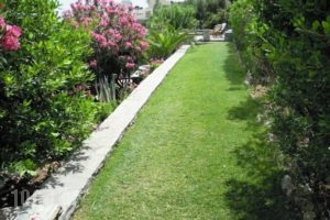 Blue Dolphin_best prices_in_Hotel_Cyclades Islands_Andros_Batsi