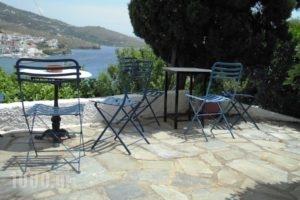 Blue Dolphin_holidays_in_Hotel_Cyclades Islands_Andros_Batsi