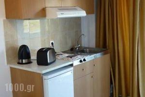Sealand Studios_best prices_in_Hotel_Dodekanessos Islands_Karpathos_Karpathos Chora
