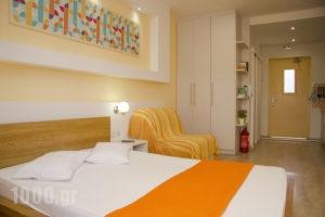 Niko Studios_best prices_in_Apartment_Ionian Islands_Kefalonia_Argostoli