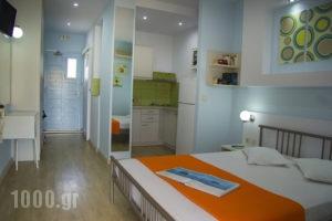 Niko Studios_lowest prices_in_Apartment_Ionian Islands_Kefalonia_Argostoli
