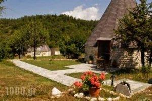 Theasis-Igloo_travel_packages_in_Epirus_Arta_Arta City