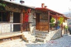 To Xani in  Paleos Panteleimonas, Pieria, Macedonia
